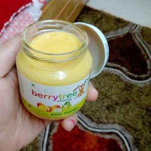 mango-milk pulp